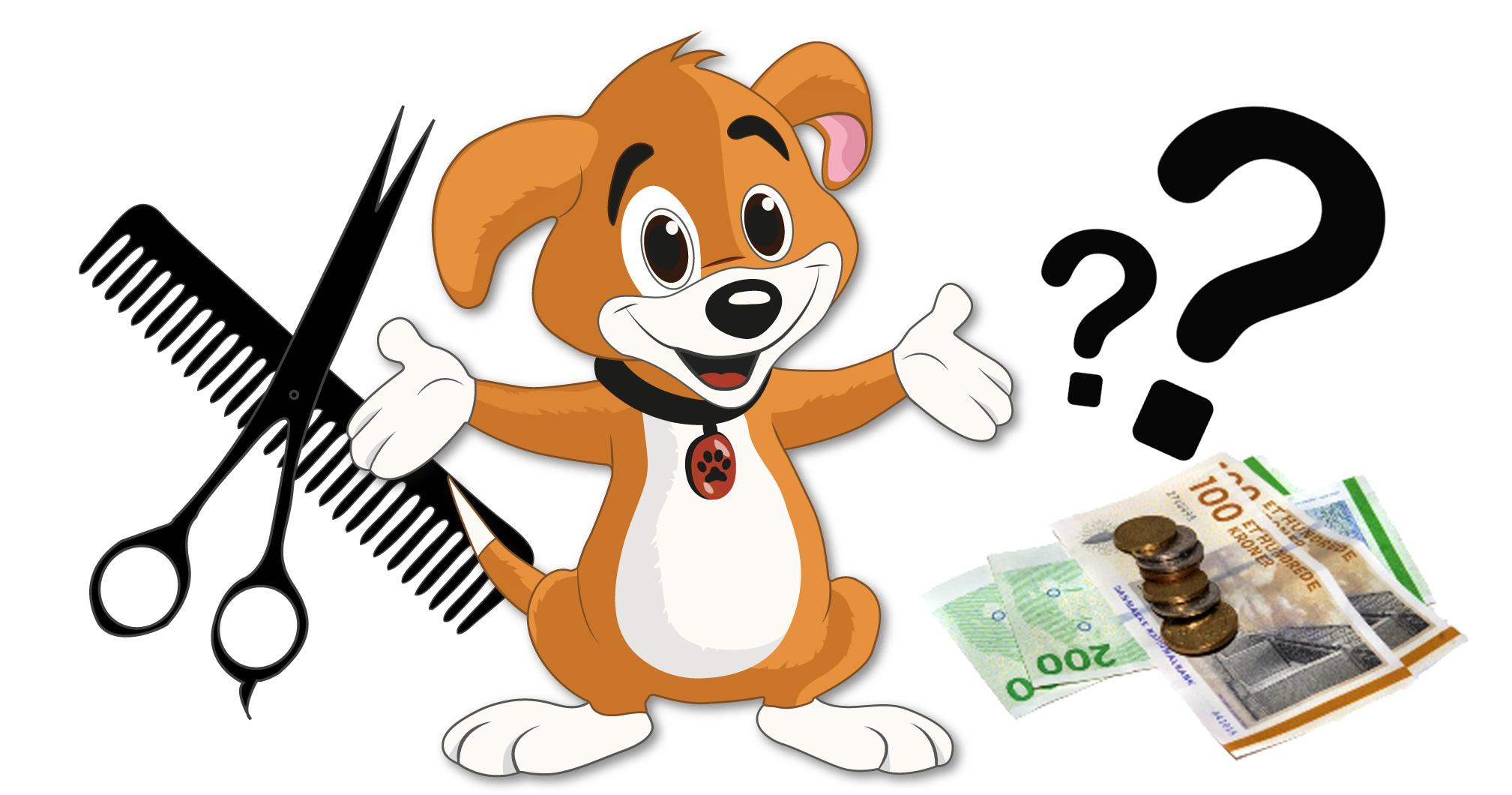 Hvorfor koster det så meget at få klippet sin hund?